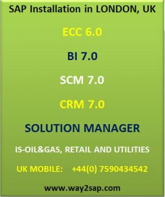 SAP Installation, SAP BI Installation and SAP CRM Installation