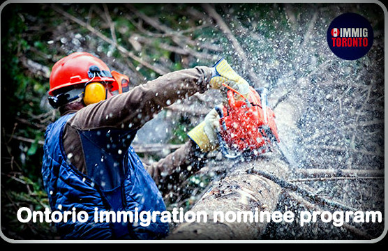 Alberta Immigrant Nominee Program (AINP)
