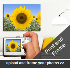 Image Finish – Photo and Picture Framing in Perth