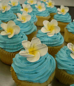 Cupcakes shop Perth You can Rely on for Special Celebrations